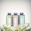 Flora By Gucci Gorgeous Gardenia
